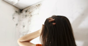 Premise Liability - Did the inspector accurately inspect your property?